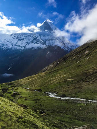 Unmanned grassland at the foot of Machhapuchhre in Nepal Stock Photo