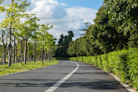 Unmanned Green Road in the park 스톡 콘텐츠
