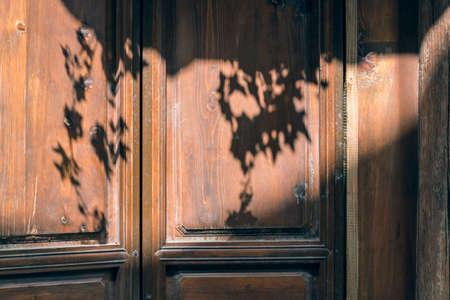 Leaf shadow on the door
