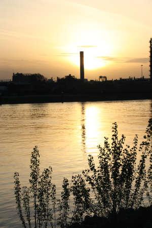 wasser: Sonnenuntergang am Rhein bei Mannheim