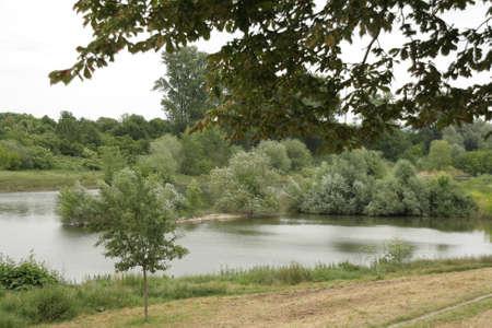 wasser: Neckar bei Mannheim