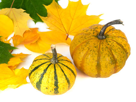 Two pumpkins and autumn leaves isolated on white