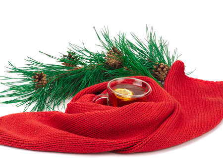 tea with lemon in the cup, scarf around the cup and a branch of spruce isolated on white background