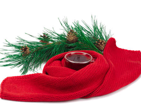 black tea in the cup, scarf around the cup and a branch of spruce isolated on white background