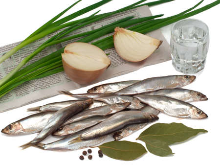 Sprat spicy salting in a plate, onions and green onions on the newspaper, glass of vodka on white background Foto de archivo