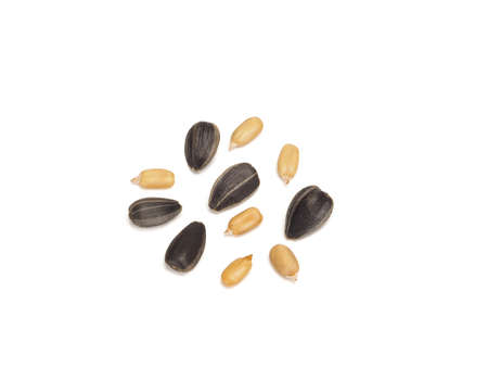 Black sunflower fried seeds peeled and unpeeled, close-up