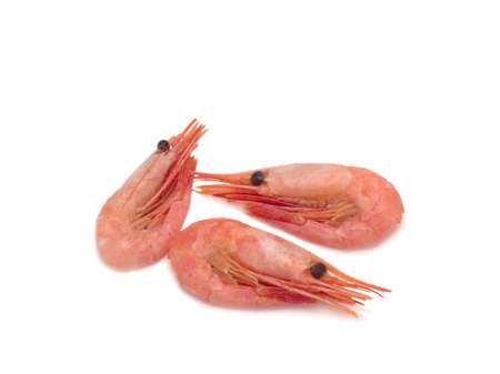 Three fresh cooked shrimp on white background. Seafood.