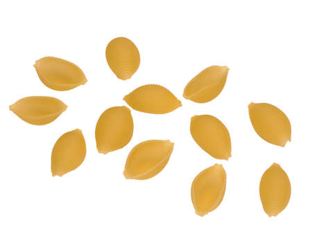 Italy dry raw pasta conchiglie closeup on a white background