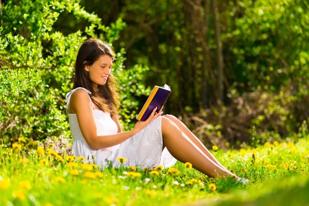 A young woman lying on the grass and reading a book Stock Photo - 19428704