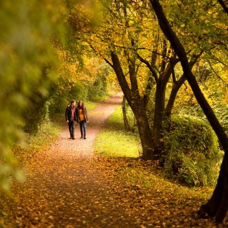 parejas caminando: Los amantes de caminar de la mano en el otoño de parque
