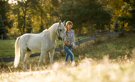 Beautiful young woman with a white horse in the country photo