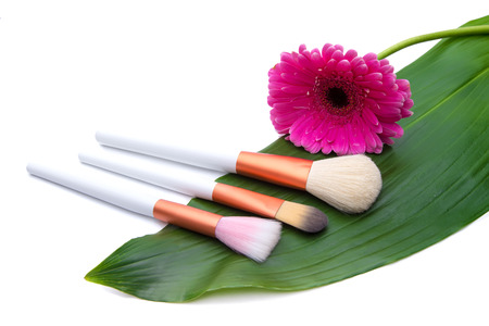 Makeup Brushes on green leaf with flower photo
