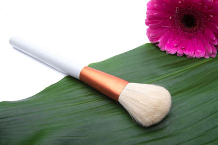 Makeup Brush on green leaf  photo