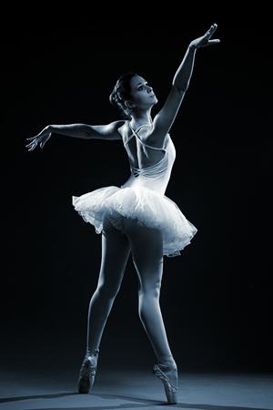 ballet dancer: Ballet Dancer
