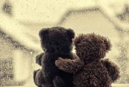valentine s day teddy bear: Bears in love Stock Photo