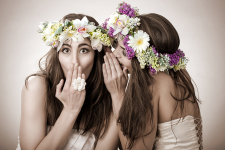 Two beautiful spring fairy , funny, friendship symbol photo