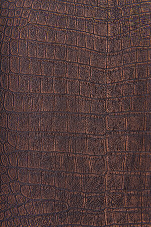 crocodile skin: Crocodile skin leather, bronze, metallic background