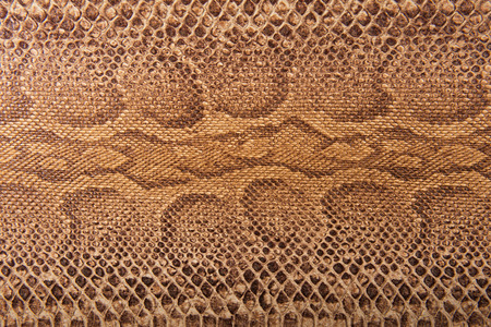 snake skin pattern: Brown snake pattern imitation, background Stock Photo