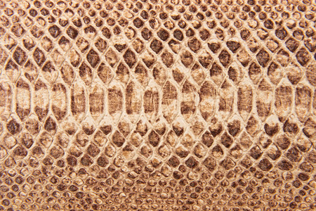 Bruine slang patroon imitatie, achtergrond Stockfoto
