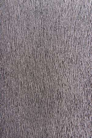 Grained gray, silver, metallic background
