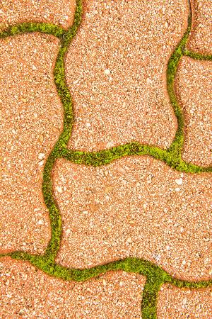 inbetween: Cobblestone pavement in between - green moss