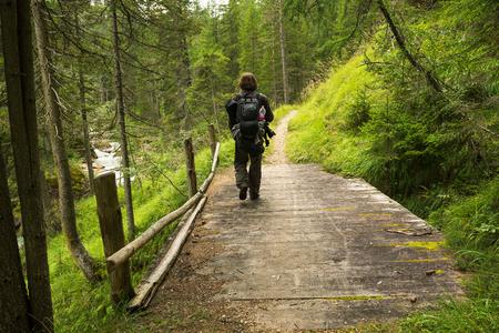 森でハイキングに橋の上の男