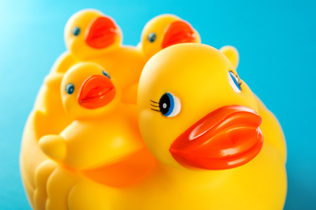 yellow duck: Yellow rubber duck and little ducky isolated on blue background Stock Photo