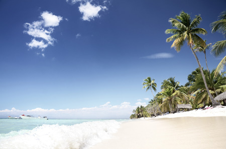 republic dominican: Tropical, empty beach, Saona Island, Dominican Republic