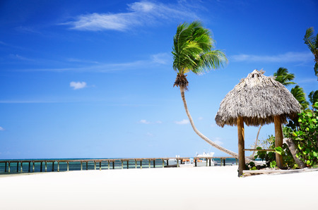 republic dominican: Exotic Beach in Bavaro, Dominican Republic, Punta Cana Stock Photo