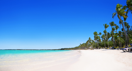 dominican: Palm trees and sandy beach, Bavaro, Punta Cana, Dominican Republic Stock Photo