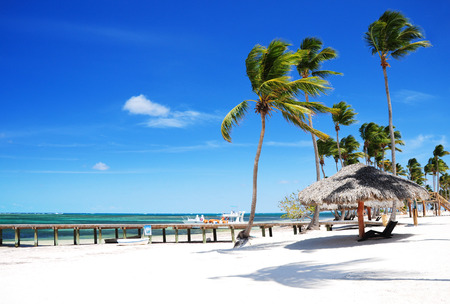 푼 타 Cana, Bavaro에서에서 모래 열 대 해변에서 아름 다운