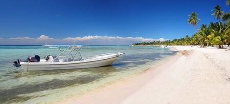 완벽한 써니, Saona 섬, 도미니카 공화국과 함께 낙원 열대 섬 해변의 풍경
