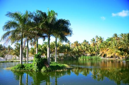 럭셔리 리조트, 도미니카 공화국의 아름다운 열대 호수 위에 일몰 스톡 콘텐츠