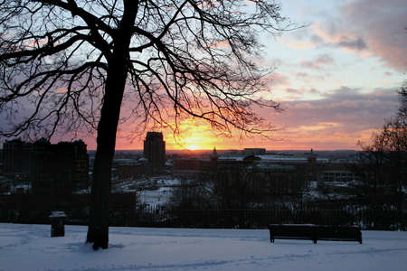 A sunset over the city of Providence, RI, USA. Winter atmosphere with the silhouette of a tree. photo