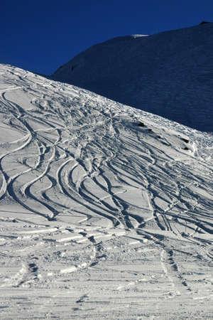 boarders: traces left in powder snow by skiers, boarders.