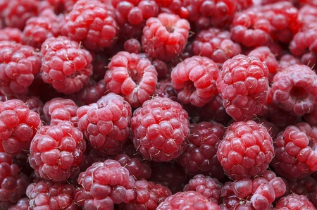 collected: Heap of freshly collected appetizing raspberry closeup Stock Photo