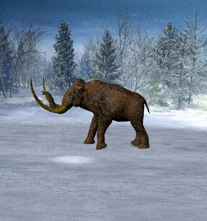 woo: Mammoth in landscape in the ice age. Stock Photo
