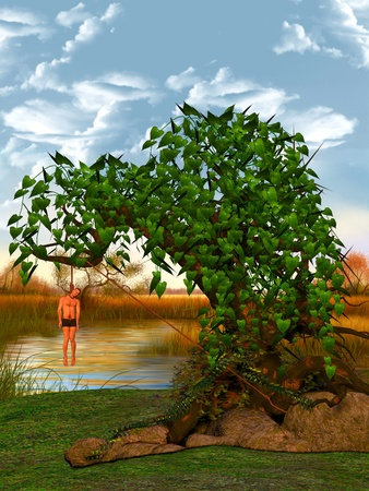 Hangman in a tree on the banks of a river. Stock Photo