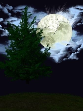 The forest in the light of the cracked moon. Stock Photo