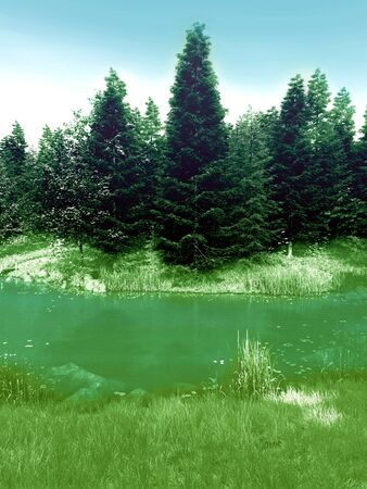 Mystical forest with river in somewhere  Stock Photo