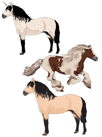 Two wild horses and one unicorn on a white background  Stock Photo