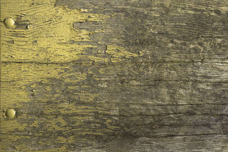 Front view of a wooden board with green grunge paint.