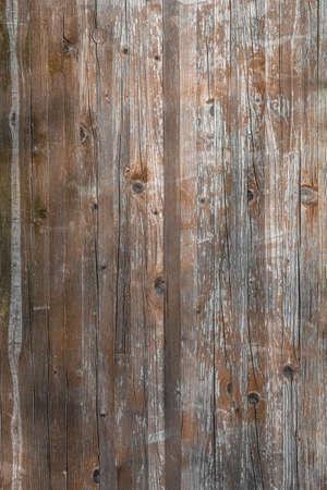 Planks of rustic wood with light brown tones. Reklamní fotografie