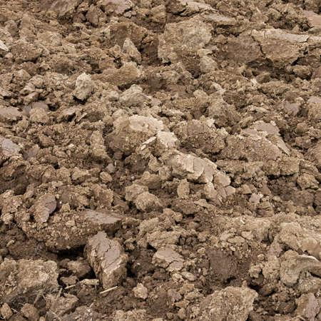 perspectiva lineal: Vista abierta en terreno arado en primavera, listo para el cultivo. Foto de archivo