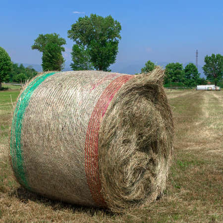zoo as: A bale of hay in a field, in the Italian countryside.