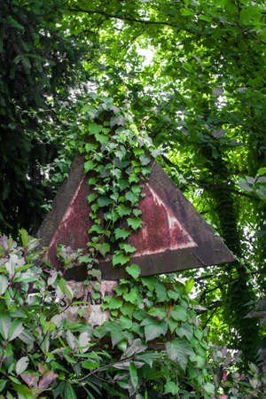 rust covered: Road sign rusty and covered by the surrounding vegetation.