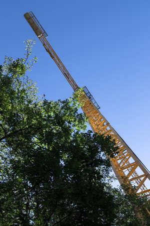 vegetation: A crane rises among the trees and vegetation.