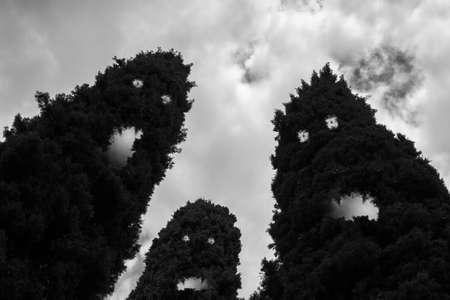 悪夢のように 3 本の木は、邪悪なモンスターに変換されます。 写真素材 - 50150500