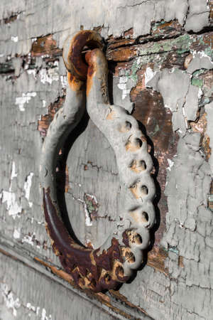 ornate door: Antique portal with beautiful, ornate door knocker, landscape, detail.