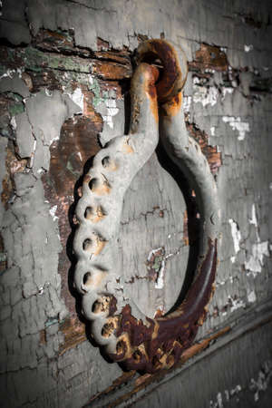 iron gate: Antique portal with beautiful, ornate door knocker, landscape, detail.